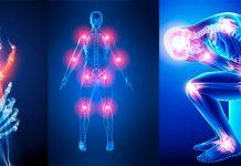 ارتوپدی - سیستم عضلانی - درمان - تخصص پزشکی